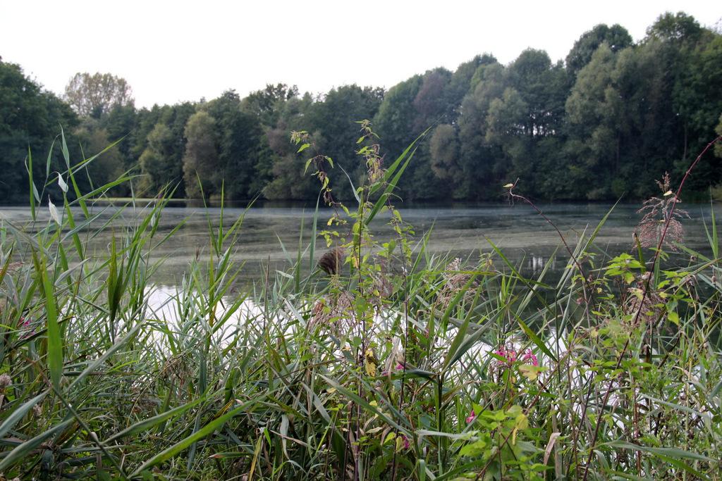 Heipker-See-2014-IMG_2403