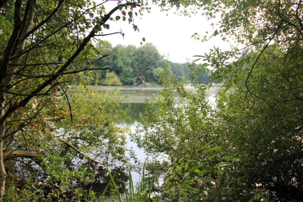Heipker-See-2014-IMG_2416